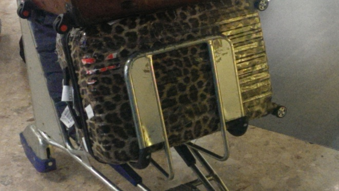 That's a suitcase!!