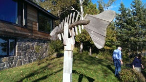 Hal's fish skeleton weather vane