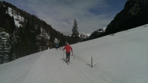 Cross country skier in Lichtenstein