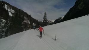Cross country skier in Lichtenstein