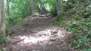 Le Salève Trail