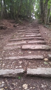Le Saleve stairs
