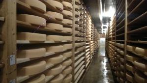 Cheese wheels