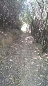 Portofino trail